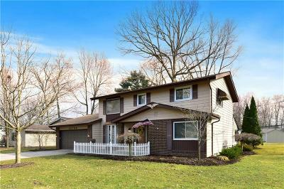 Single Family Home For Sale: 26799 Locust Dr
