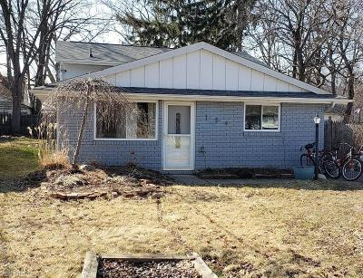 Avon Lake Single Family Home For Sale: 154 Norman Ave