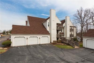 Lorain County Condo/Townhouse For Sale: 1201 West River Rd North #B-3