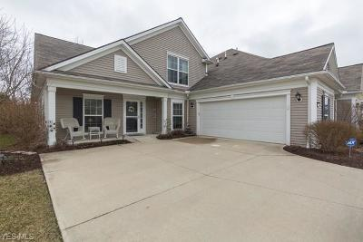 Medina County Single Family Home For Sale: 5295 Spruce Pointe Ln