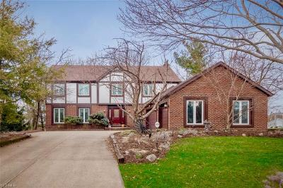 Strongsville Single Family Home For Sale: 19844 Wildwood Ln
