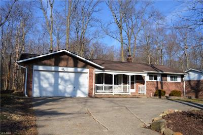 Strongsville Single Family Home For Sale: 16400 West 130th St