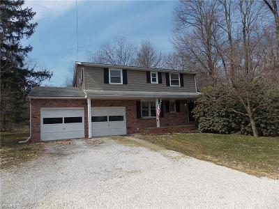 Medina County Single Family Home For Sale: 8956 River Styx Rd