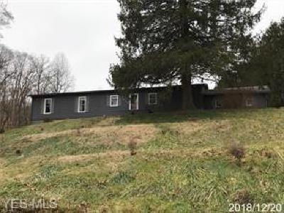 Muskingum County, Perry County, Guernsey County, Morgan County Single Family Home For Sale: 6445 Friendly Hills Rd
