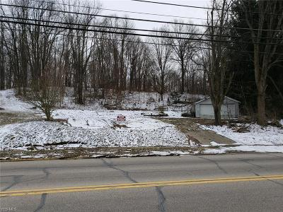Medina County Residential Lots & Land For Sale: 317 State St