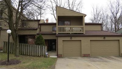 Broadview Heights Condo/Townhouse For Sale: 124 Kimrose Ln #124