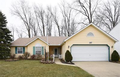 Lorain County Single Family Home For Sale: 217 Syracuse Ct