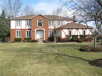 Solon Single Family Home For Sale: 33167 Lisa Lane