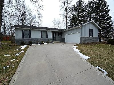 North Royalton Single Family Home For Sale: 4161 Pine Hill Ct