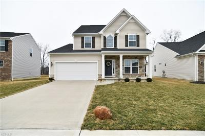 Medina County Single Family Home For Sale: 272 Langley Ln