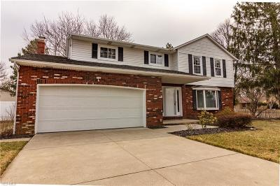 Strongsville Single Family Home For Sale: 16999 Antler Ln