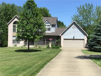 Canfield Single Family Home For Sale: 10351 Lincoln Road