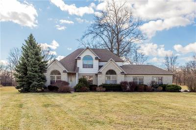 Lorain County Single Family Home For Sale: 6235 Oak Point