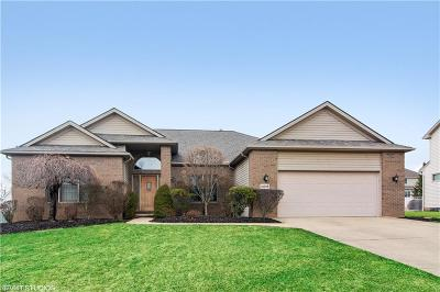 Strongsville Single Family Home For Sale: 13596 Glennbrook Dr