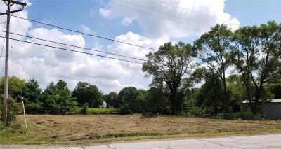 Lorain County Residential Lots & Land For Sale: 5335 West River Rd