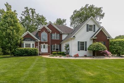 Concord Single Family Home For Sale: 6040 Nature View Ct