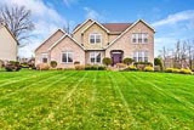 Mahoning County Single Family Home For Sale: 3800 Francesca