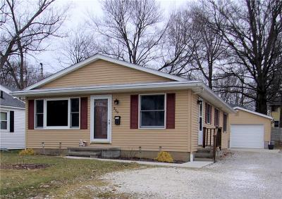 Medina County Single Family Home For Sale: 250 Baldwin St