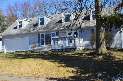 Medina County Single Family Home For Sale: 150 Roshon Dr