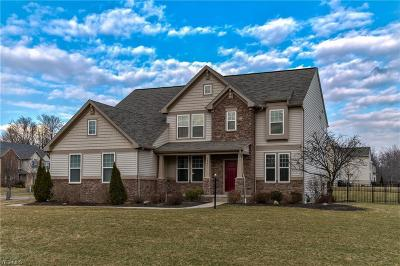 Twinsburg Single Family Home For Sale: 7867 Ridgetop Dr