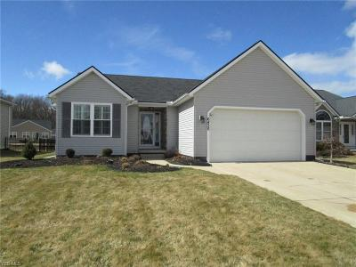 Lorain County Single Family Home For Sale: 6436 Majestic Dr