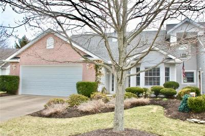 Strongsville Single Family Home For Sale: 15127 Colony Ct