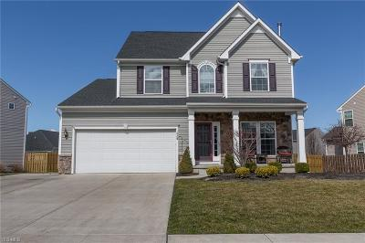 Painesville Single Family Home For Sale: 1823 Spruce Ln