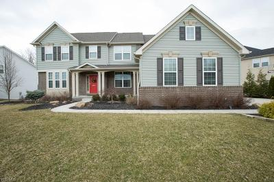 Twinsburg Single Family Home Contingent: 2995 Steffan Woods Dr