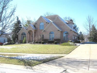 Medina County Single Family Home For Sale: 4316 Lakeview Glen Dr