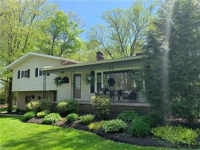 Canfield Single Family Home For Sale: 7179 West Middletown Rd