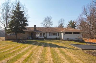 Strongsville Single Family Home For Sale: 15233 Whitney Rd
