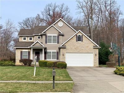 Lorain County Single Family Home For Sale: 132 Timber Ridge Dr #RDR
