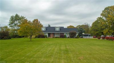 Medina County Single Family Home For Sale: 8901 Shank Rd