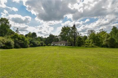 Canfield Single Family Home For Sale: 490 N Broad Street