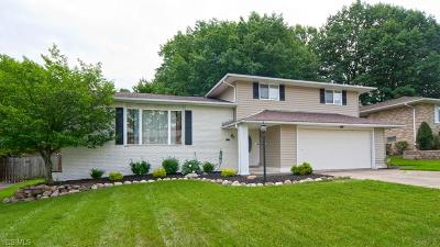 Parma Single Family Home For Sale: 7233 Antoinette Dr