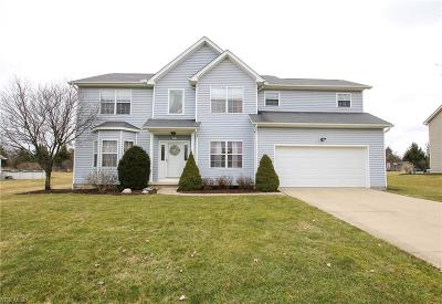 Medina County Single Family Home For Sale: 839 White Willow Ln