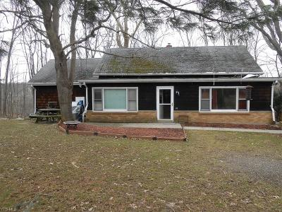 Concord Single Family Home For Sale: 6210 Painesville Ravenna Road