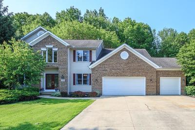 Mentor Single Family Home For Sale: 5576 Primavera Dr
