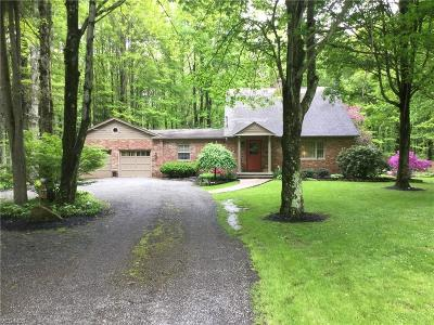 Leavittsburg Single Family Home Active Under Contract: 4244 Eagle Creek Road