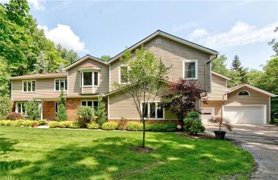 Chagrin Falls Single Family Home For Sale: 9590 Stafford Rd