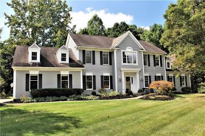 Hudson Single Family Home For Sale: 7574 Herrick Park Drive