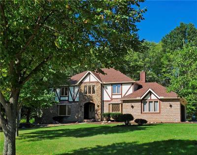 Brecksville Single Family Home For Sale: 9531 Greystone Pky