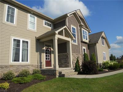 Chagrin Falls Single Family Home For Sale: 18545 Amber Trl