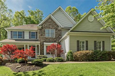 Chagrin Falls Single Family Home For Sale: 8095 Bainbrook Dr