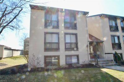Sagamore Hills Condo/Townhouse For Sale: 6310 Greenwood #106