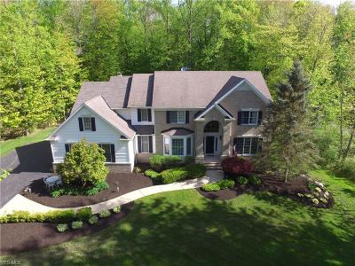 Chagrin Falls Single Family Home For Sale: 9730 Weathertop Ln