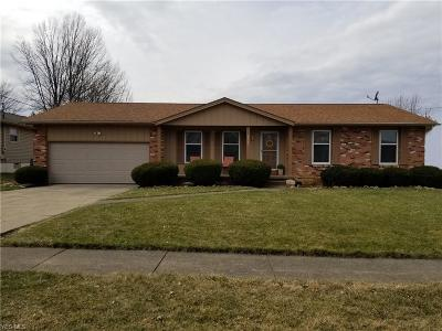 Youngstown Single Family Home For Sale: 292 Paris Dr