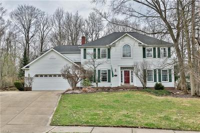 Solon Single Family Home Contingent: 34676 Blue Heron Dr
