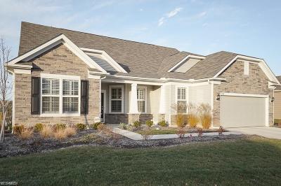 North Ridgeville Single Family Home For Sale: 9448 Foxboro Dr