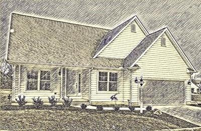 Canfield Single Family Home For Sale: 161 Saybrook